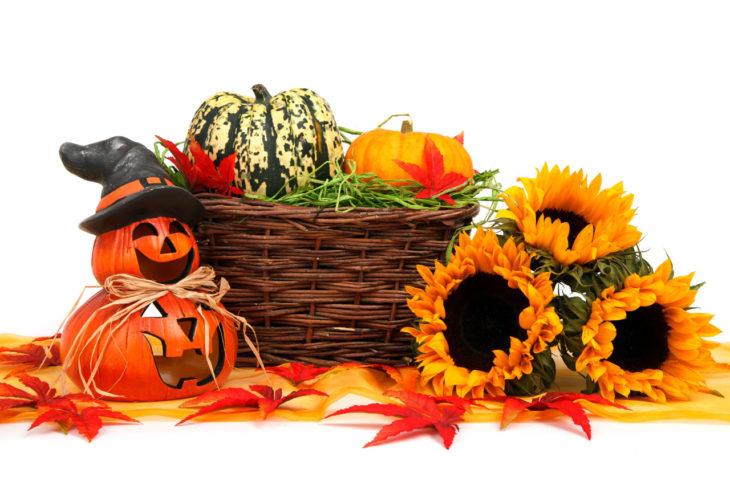halloween-harvest-decoration-11286965202rhue