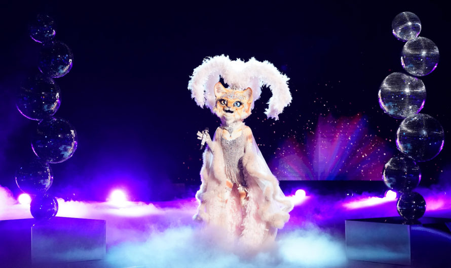The Masked Singer: Predictions of who's behind the disguise