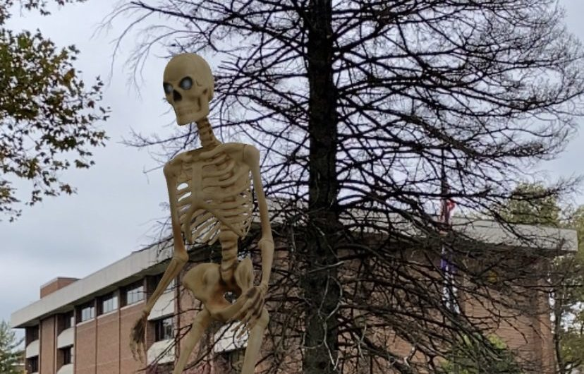 Best places on campus for the Home Depot skeleton