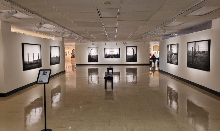 Exploring Schumacher Gallery's Holocaust exhibit