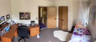 The diversity of dorm decor