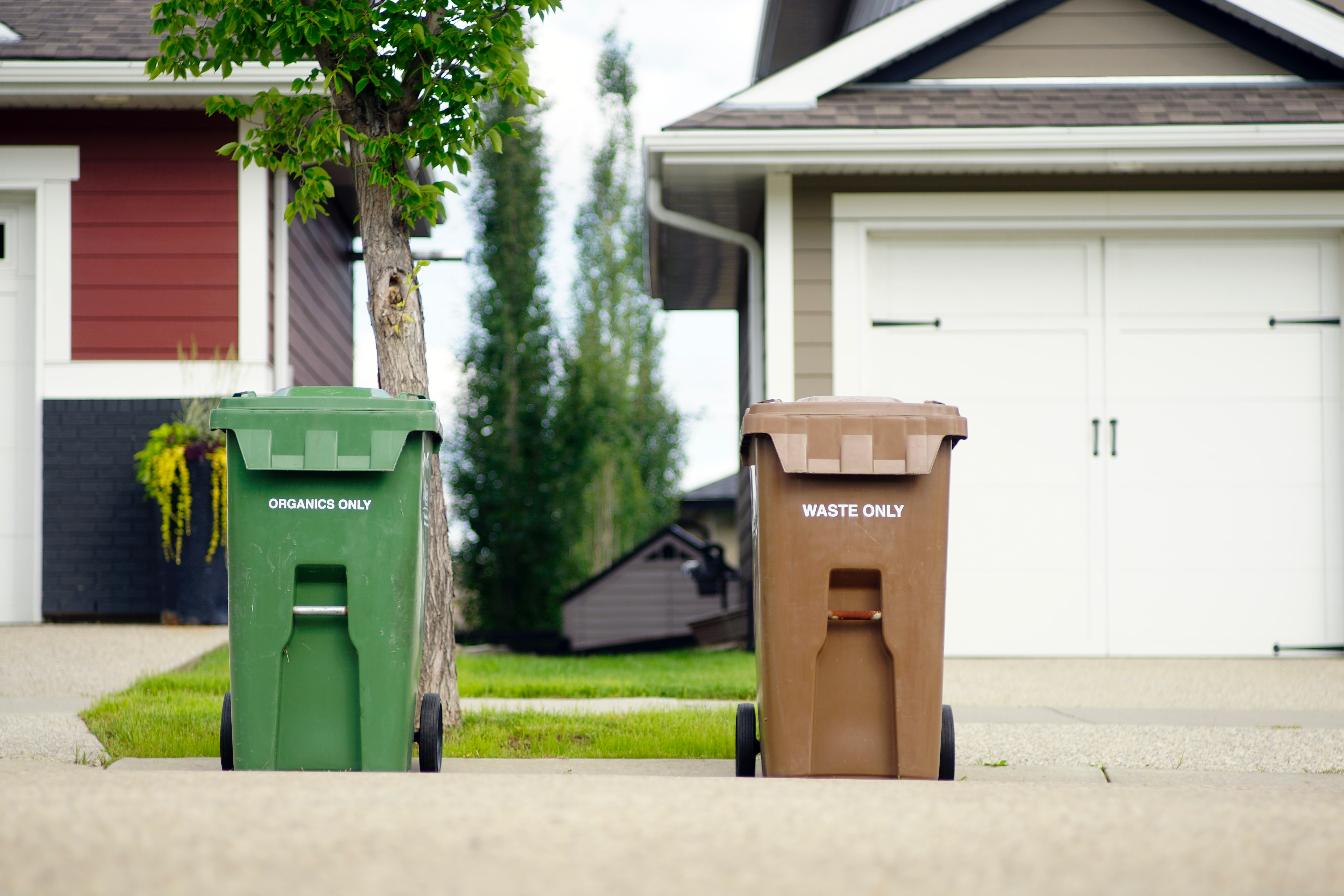 Reduce, reuse, and recycle: The realities of recycling